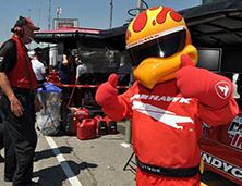 Bridgestone Firehawk Mascot | Atlanta Mascot Productions